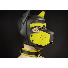COLLAR DE PERRO EN NEOPRENO NEGRO AMARILLO BY MR?S LEATHER