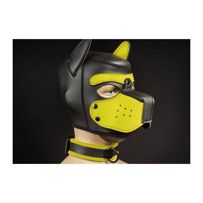 NEOPRENE PUPPY COLLAR BLACK YELLOW BY MR S LEATHER