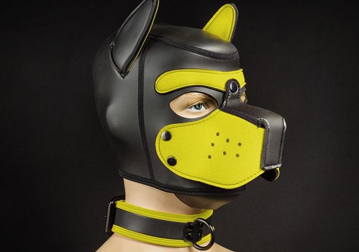 Collier de puppy en néoprène Noir Jaune Mr S Leather