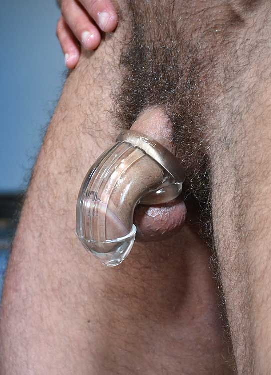 COCK-LOCK Packer chastity By OXBALLS