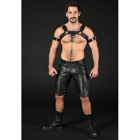 ARNES DARK ROOM BULLDOG MISTER S LEATHER