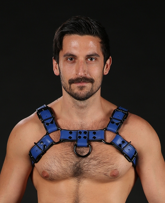 "BULLDOG HARNESS LEDER ""DARK ROOM"" von MISTER S"